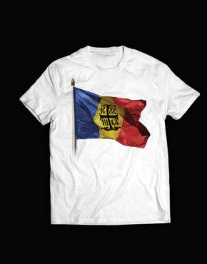 tricou tricolor