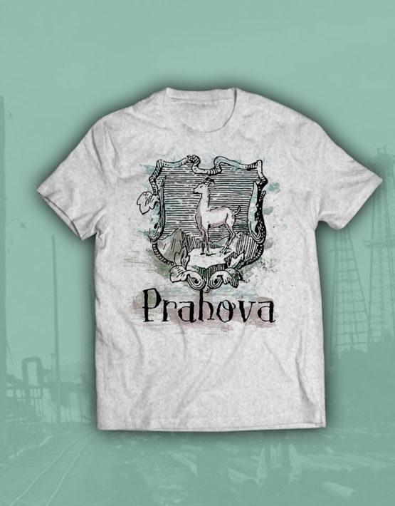 tricou-gri-prahova
